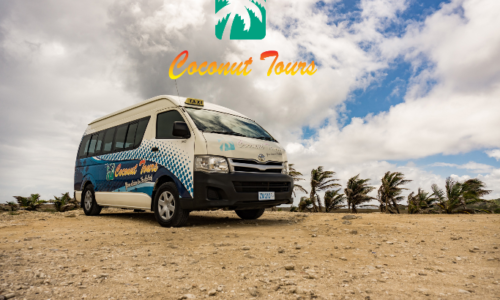 Tours & Transportation